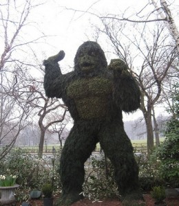 Sasquatch Topiary by Divine Harvester