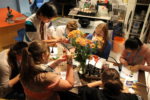 Students picking pollen from a bouquet to examine under the microscope.